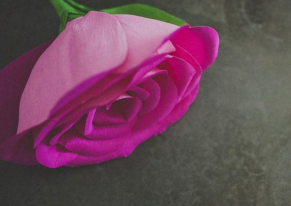 Giant Paper Rose - DIY Paper Flowers Ideas